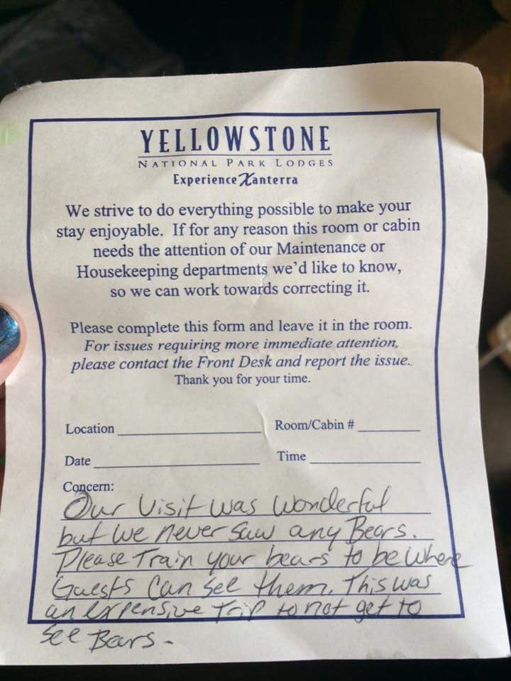 Visitors to Yellowstone National Park have a problem with the bears.