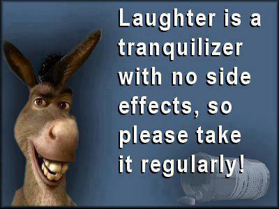 Well said Donkey. Laughter is indeed a tranquilizer and should be taken often.