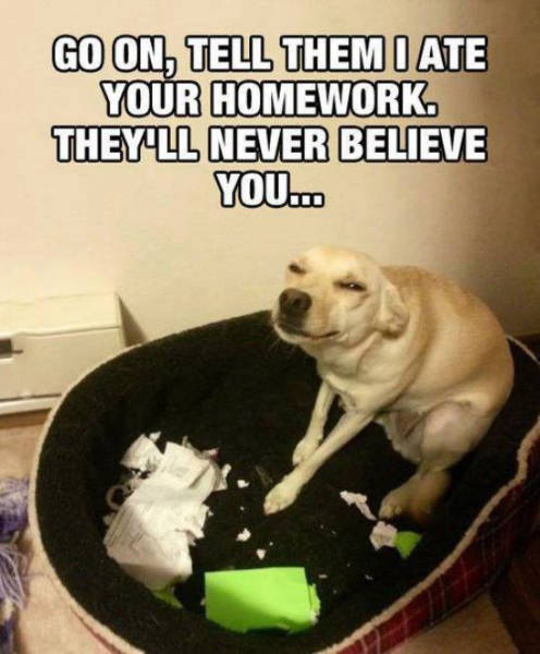 The check is in the mail, the dog ate my homework (and other scenarios ...