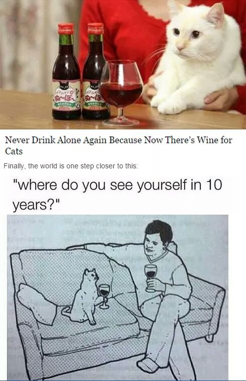 You will never have to drink alone again thanks to wine for cats.