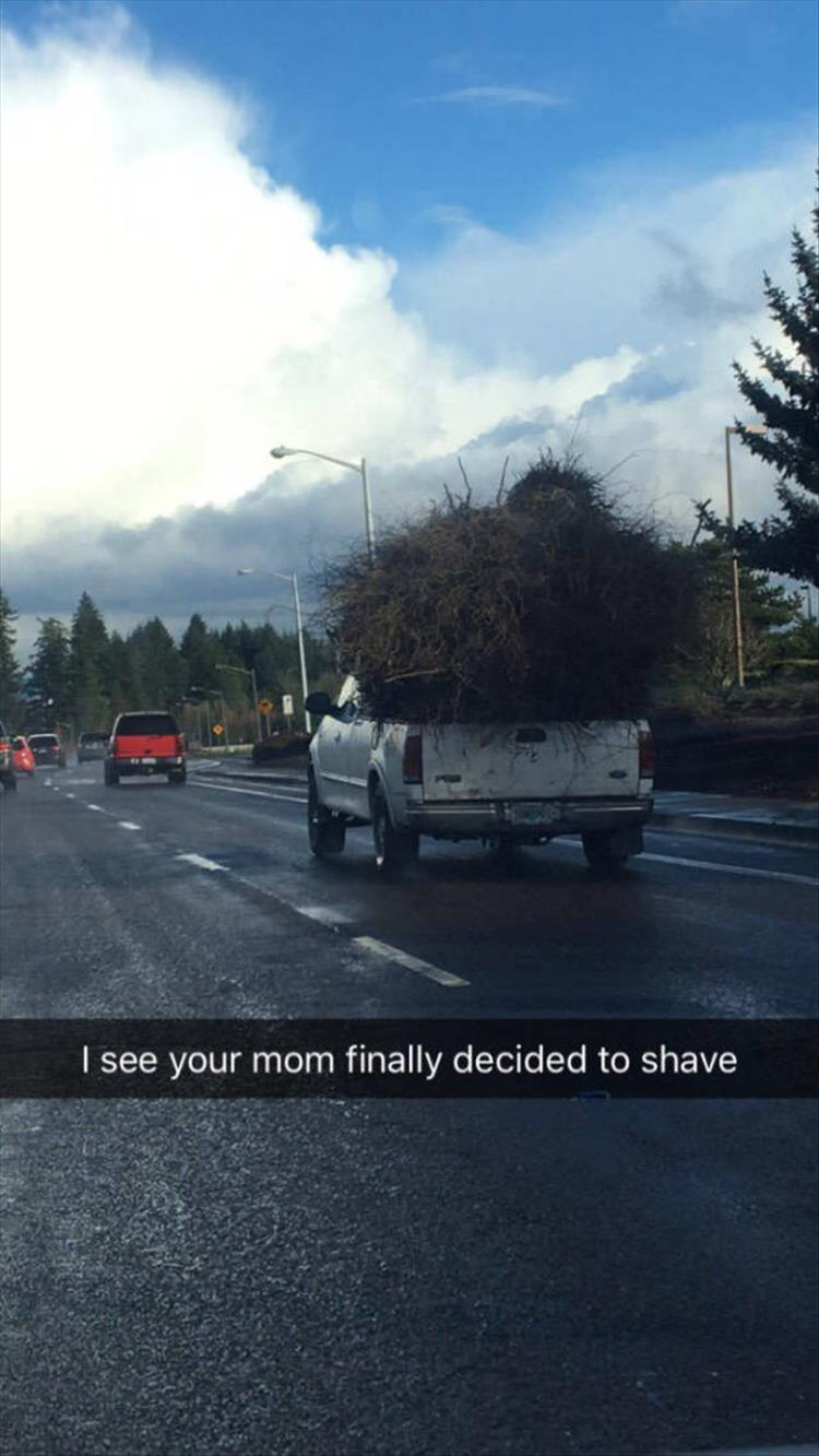 I see your mom finally decided to shave.